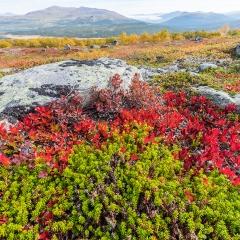 Tweede prijs landschappen Jotunheimen NP Noorwegen Roel Hoeve